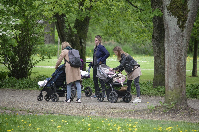 Kodėl lietuviai išlaiko savo pilnamečius vaikus?<br>V.Ščiavinsko nuotr.