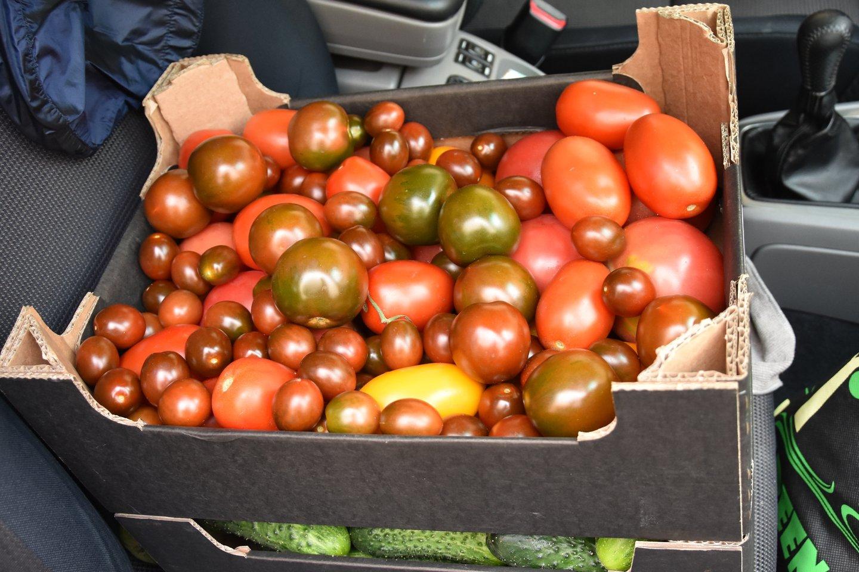 Pirkėjų favoritai vasarą tampa pomidorai.<br>A.Srėbalienės nuotr.