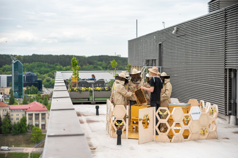 Bičių avilius ant savo pastato stogo įsikuria vis daugiau Lietuvos įmonių<br>Virtuozai nuotr.