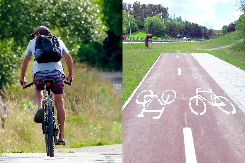 Šią vasarą dviračiu ar pėsčiomis galima nukeliauti į pievą.<br>lrytas.lt fotomontažas