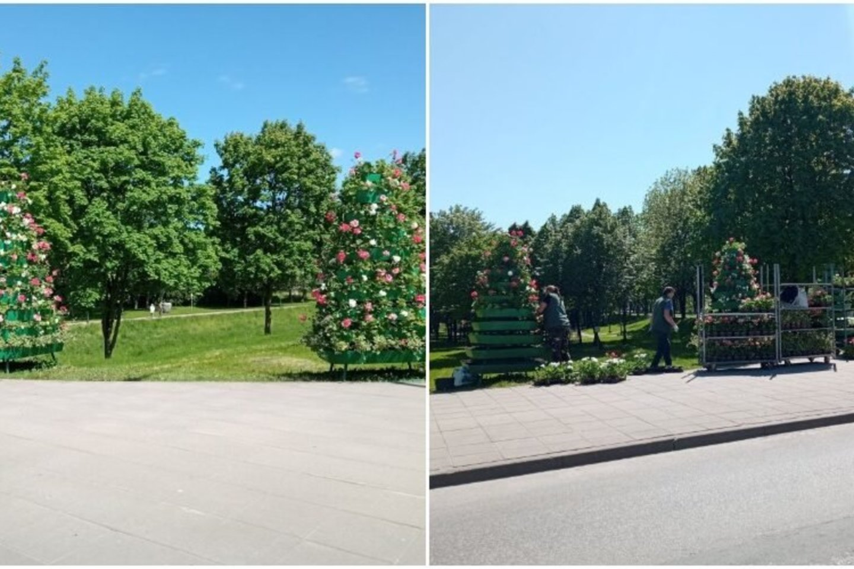 Įvairiose miesto vietose statomos specialios gėlių klombos ir lauko vazonai, o juose sodinamos puošniausios gėlės.<br>Dimitrijaus Kuprijanovo nuotr.