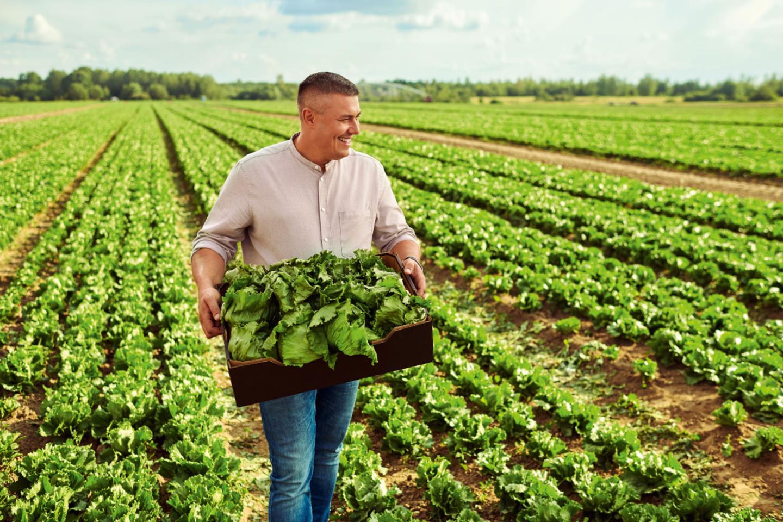V. Nagreckis akcentuoja, kad jo ūkis yra sertifikuotas pagal tarptautinį GLOBALG.A.P. (angl. Good Agricultural Practice – Geroji žemės ūkio praktika) standartą, kuris užtikrina tvaresnę ir saugesnę produkciją.