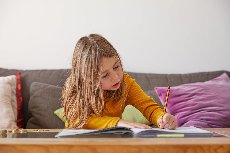 Mokymasis namie pasiteisina anaiptol ne visiems.<br>123rf nuotr.