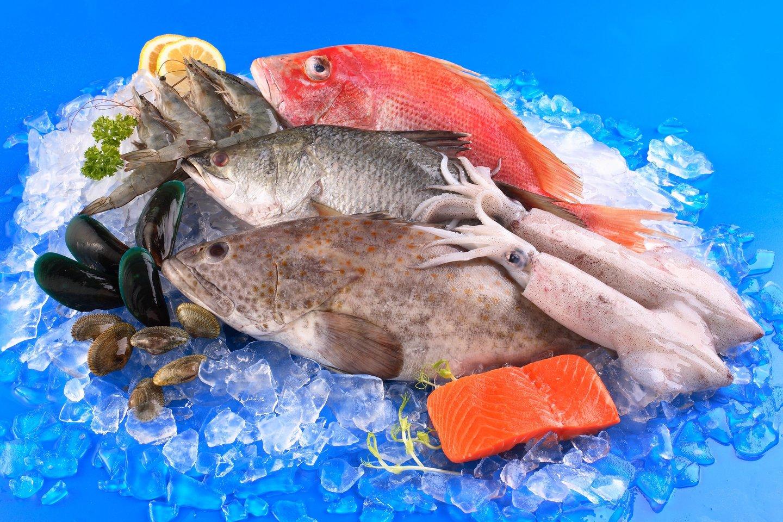 Nykstančioms žuvų rūšims išsaugoti priimami įvairūs komercinės žvejybos reguliaciniai mechanizmai.<br>123rf.com asociatyvi nuotr.