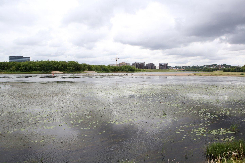 Aplinkosaugininkai, nuolat gaunantys pranešimų dėl taršos Nemuno upėje ties Kaunu, aiškinasi jos priežastis.<br>M.Patašiaus asociatyvi nuotr.
