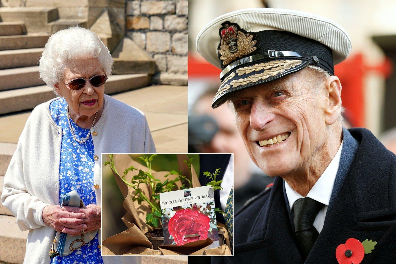Princo Philipo gimimo dienos proga Elizabeth II jaukiai pagerbė jo atminimą.<br>LR koliažas.