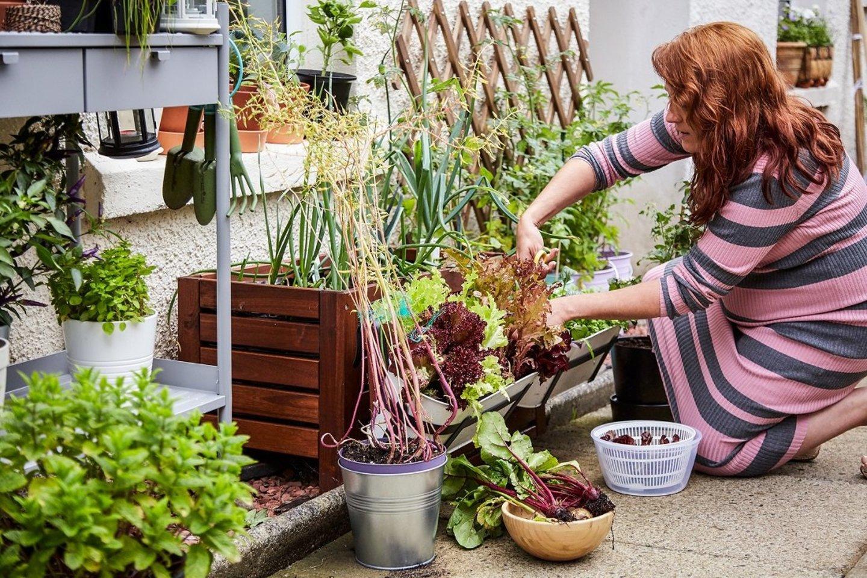 Septyni iš dešimties lietuvių savo namuose imasi priemonių aplinkai saugoti.<br>IKEA nuotr.