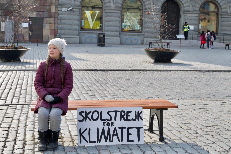 Po pertraukos G. Thunberg grįžo protestuoti prie Švedijos parlamento<br>123rf nuotr.