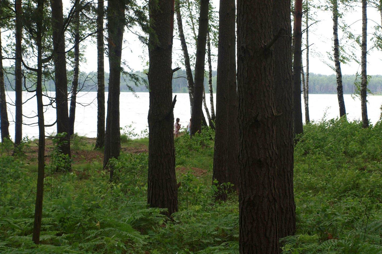 Paplūdimys prie Visagino ežero.<br>A.Srėbalienės nuotr.