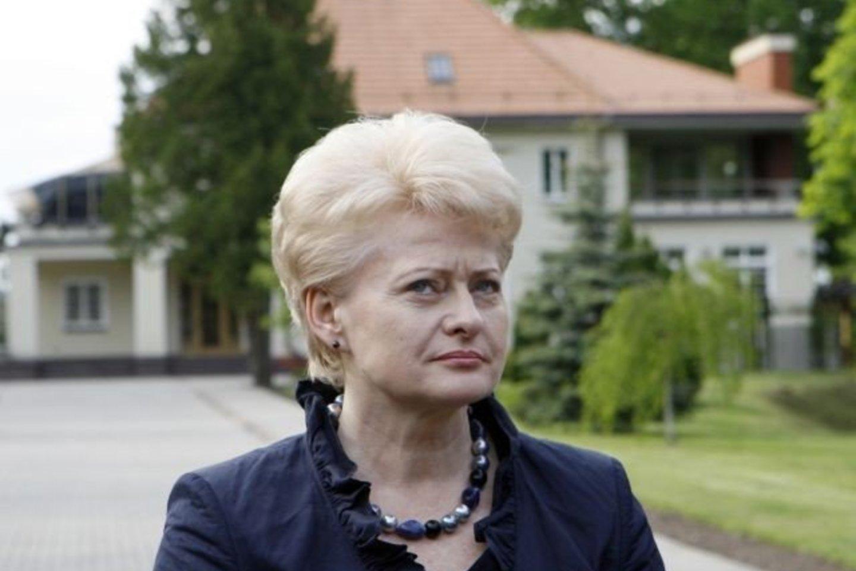 G.Vainauskas knygoje atskleidžia ir negirdėtų detalių apie Lietuvą 10 metų valdžiusią D.Grybauskaitę.<br>R.Neverbickas