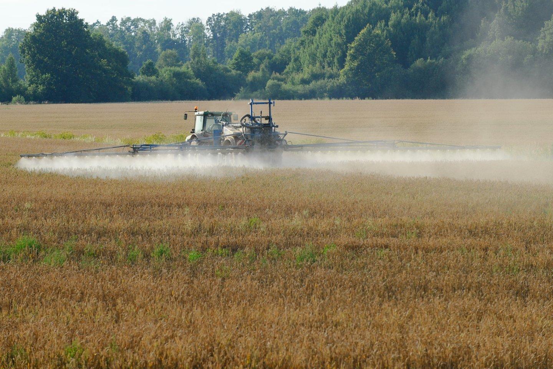 Pesticidai.<br>V.Ščiavinsko nuotr.