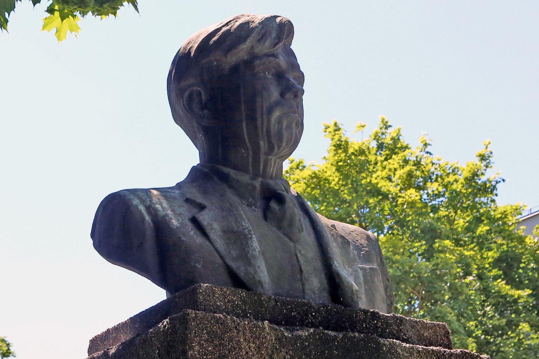 P.Cvirkos paminklas Kaune.<br>M.Patašiaus nuotr.