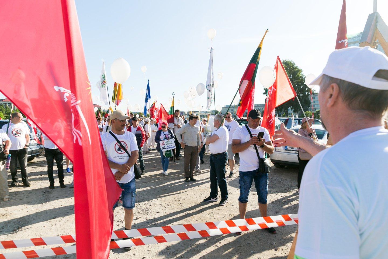 """Protesto akcija prie Seimo dėl """"Didžiojo Šeimos Gynimo Maršo"""" metu iškeltų tikslų.<br>T.Bauro nuotr."""
