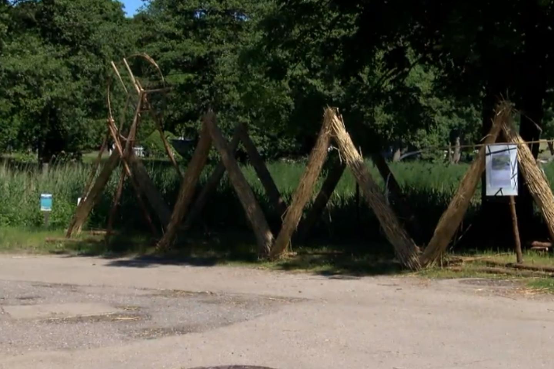 """Juodkrantės Gintaro įlankoje, kaip ir kasmet tokiu metu, įsikūrė menininkų būrys.<br>""""Lietuvos ryto"""" televizijos stop kadras"""