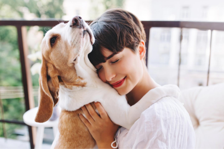 Jei šunims karšta, rekomenduojama pagalvoti ir apie vėsinančių rūbų įsigijimą.<br>Pranešimo nuotr.