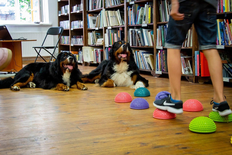 Kauno Vinco Kudirkos viešoji biblioteka kviečia vaikus į nemokamus vasaros užsiėmimus bibliotekos skyriuose ir padaliniuose.<br>Pranešimo spaudai nuotr.