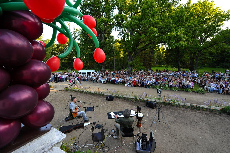 """Liepos 15 -18 d. Žagarėje jau septynioliktą kartą įvyks Žagarės vyšnių festivalis 2021 – vienas žinomiausių festivalių Lietuvoje, be kurio vasara jau tiesiog neįsivaizduojama. Festivalis šiemet kupinas naujovių, o jo šūkis – """"Visiems, kas su mumis"""".<br>V.Ščiavinsko nuotr."""
