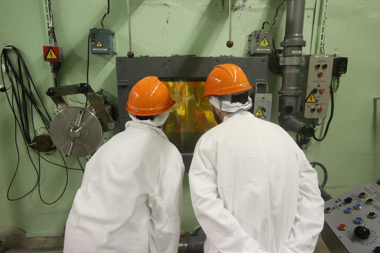 Ignalinos atominės elektrinės eksploatavimo nutraukimo procese yra tobulintinų veiklų.<br>R.Danisevičiaus nuotr.