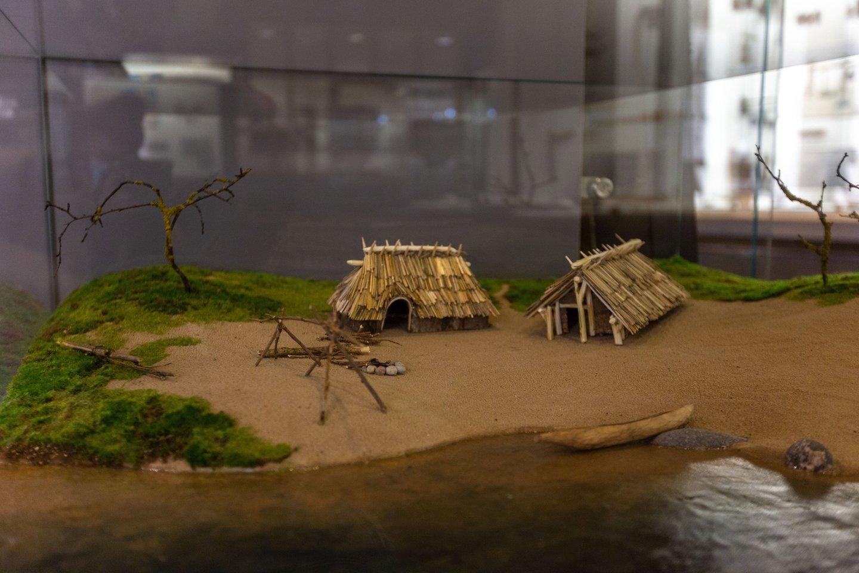 LNM archeologijos ekspozicija - 12 tūkstančių metų kelionė po Lietuvos priešistorę. Lietuvos nacionalinis muziejus.<br>LNM nuotr.