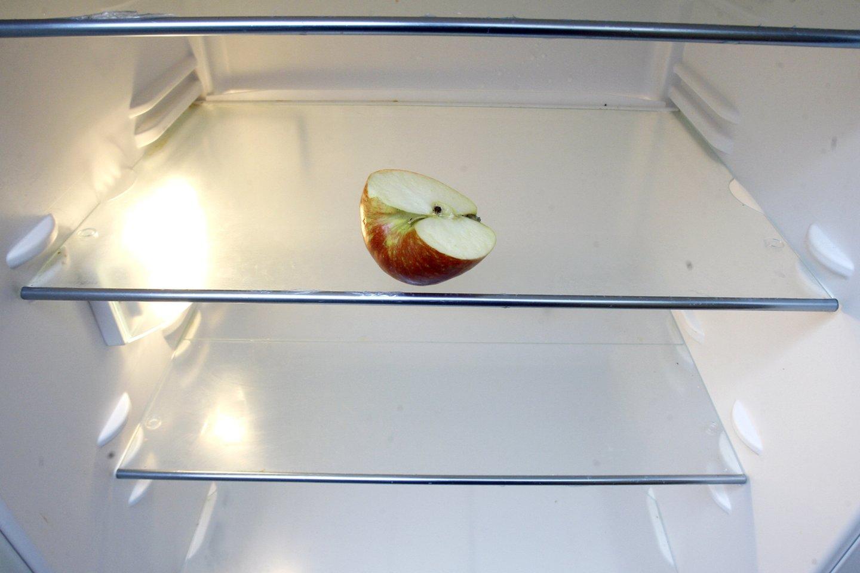 Kad šiltuoju metų laiku staiga netektų ieškoti naujo šaldytuvo sugedus senajam, specialistai siūlo įvertinti jo patikimumą.<br>R. Neverbicko nuotr.