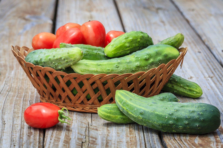 Agurkus laikyti geriau atokiau nuo pomidorų.<br>123rf nuotr.
