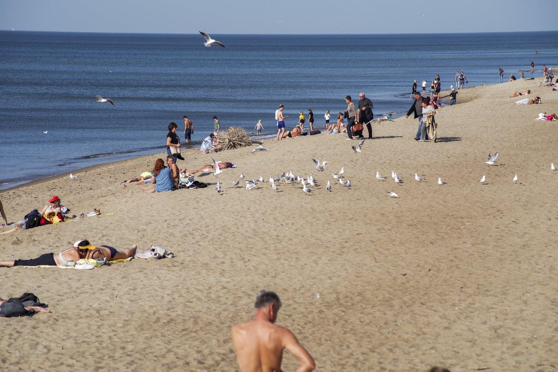 Sveikatos apsaugos ministerija planuoja nuo COVID-19 skiepyti šalies paplūdimiuose.<br>V.Ščiavinsko asociatyvi nuotr.