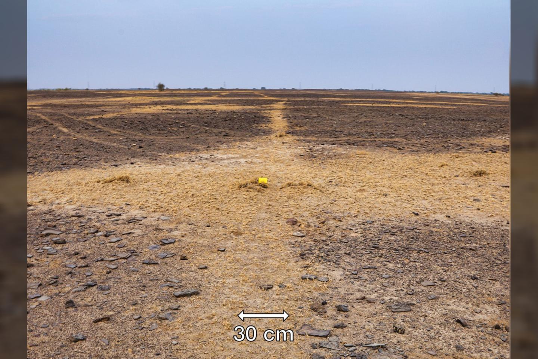 """Indijos Taro dykumoje pastebėtas vingiuotų linijų piešinys gali būti didžiausias kada nors atrastas geoglifas.<br>C. ir Y. Oetheimer / """"Archaeological Research in Asia"""" nuotr."""