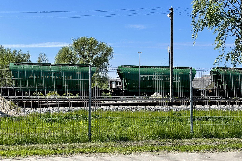 Sankcijos bus nukreiptos į pagrindinius Baltarusijos ekonomikos sektorius, įskaitant kalio trąšų eksportą.<br>V.Ščiavisnko nuotr.