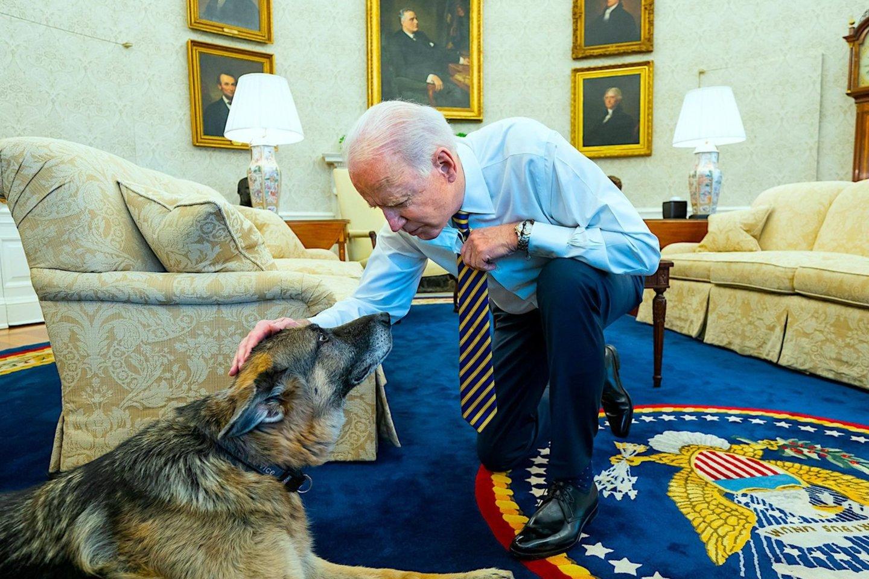 Čampas buvo mylimas J.Bideno šeimos augintinis 13 metų.<br>ZUMAPRESS.com/Scanpix nuotr.