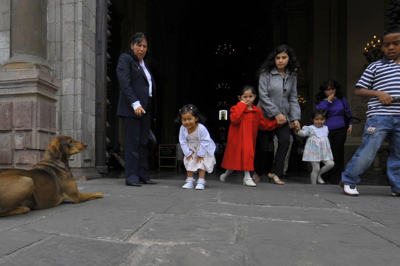Tai vienas stipriausių drebėjimų Limoje pastaraisiais metais.<br>V.Ščiavinsko nuotr.
