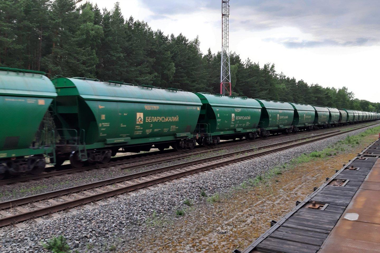 Sankcijų poveikis į tranzitą įtrauktoms Lietuvos įmonėms išlieka nežinomas.<br>G.Pilaičio nuotr.