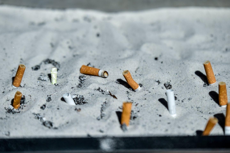 Studijoje autoriai nurodo, kad neteisėta prekyba gali būti sumažinta net tuomet, kai tabako gaminių kaina didinama, jei tik vykdoma veiksminga jos priežiūra ir kontrolė.<br>V.Ščiavinsko nuotr.