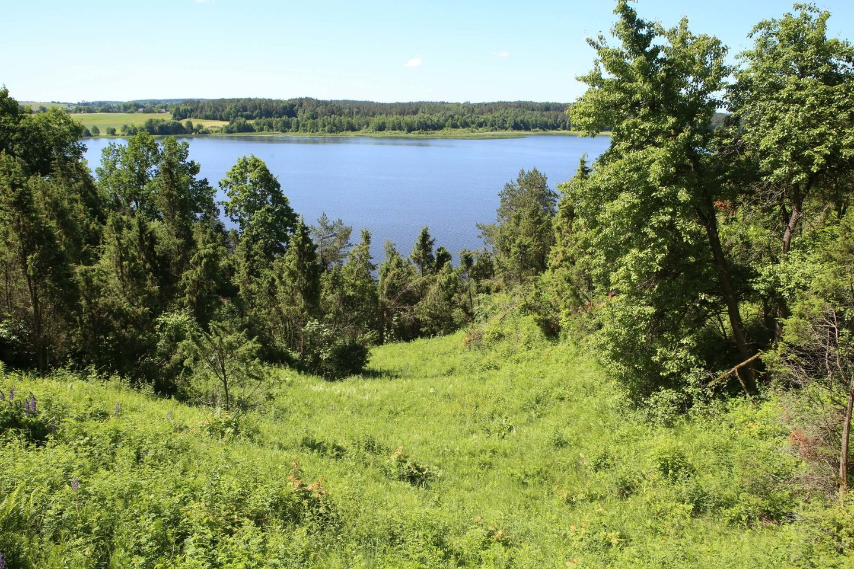 Kadagių slėnio pažintinis takas Kauno marių regioniniame parke.<br>M.Patašiaus nuotr.