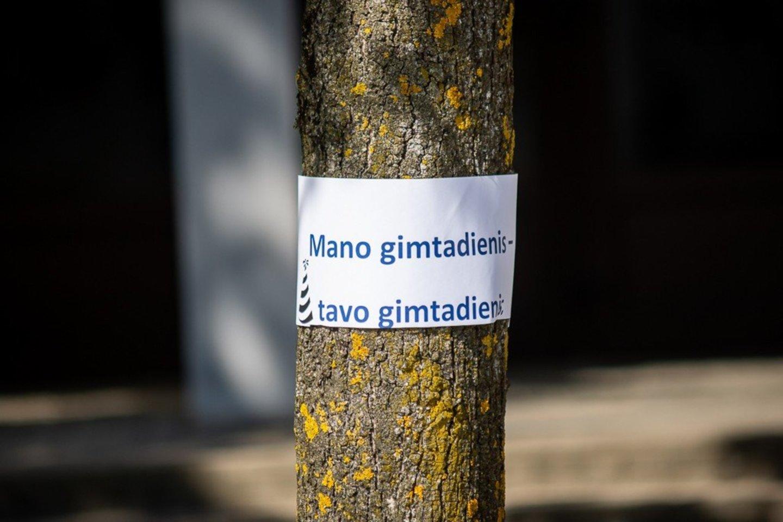 Apie paslaptingą gimtadienį byloja ir įvairios iškabos ant medžių.<br>jp.lt nuotr.