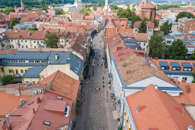 Artėjant liepos viduriui, prasidės pokyčiai seniausioje Kauno susisiekimo arterijoje – Vilniaus gatvėje, kurios dalis sutampa su prieš šimtus metų Vilniaus link vedusiu keliu.<br>Pranešėjų spaudai nuotr.