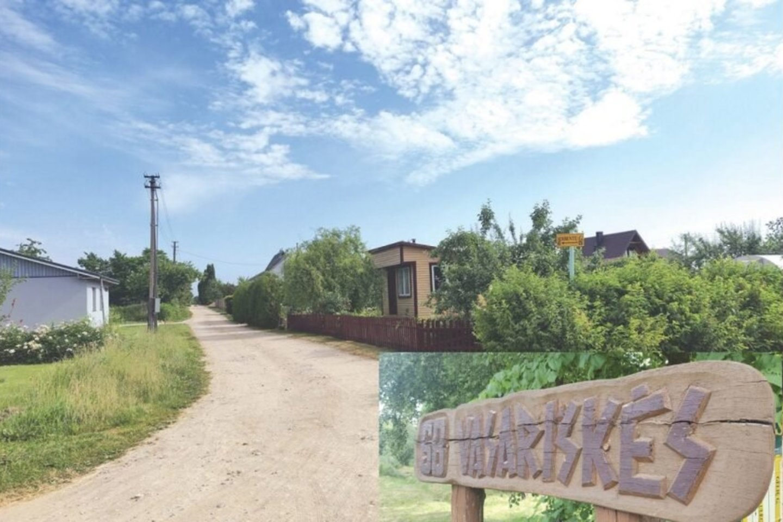Vasariškių soduose šiuo metu laksto apie tris dešimtis sulaukėjusių kačių.<br>A.Surkevičiaus nuotr.