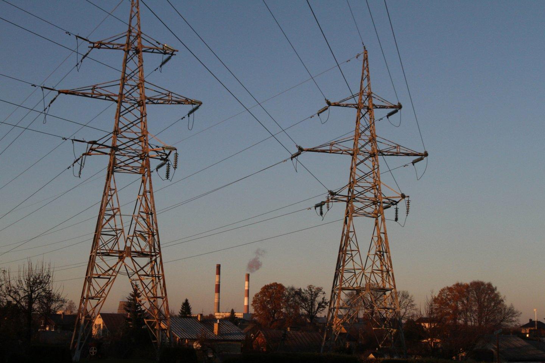 """Socialdemokratų lyderės teigimu, Vyriausybės rankose yra instrumentų, kaip galima būtų mažinti energijos kainas, tačiau, jos žodžiais, apsispręsta """"nedaryti nieko"""".<br>M.Patašiaus nuotr."""