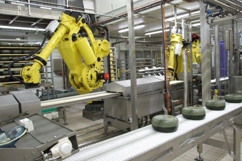 Beveik du trečdaliai Lietuvos gyventojų savo darbovietėse jaučiasi saugiai ir nesibaimina darbo prarasti dėl robotizacijos.<br>E.Baronaitės nuotr.