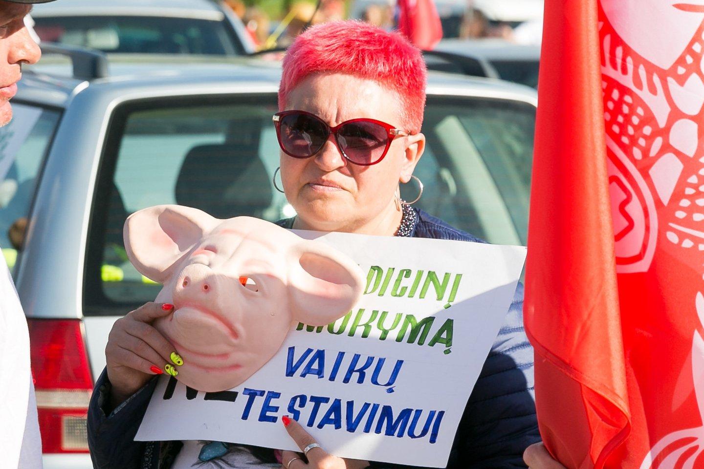 protestas Šeimų gynimo maršas<br>T.Bauro nuotr.
