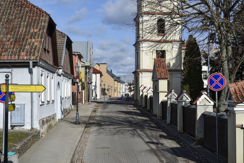 Kėdainių rajono savivaldybės teritorijoje vėl planuojamas medžių kirtimas.<br>V.Ščiavinsko nuotr.
