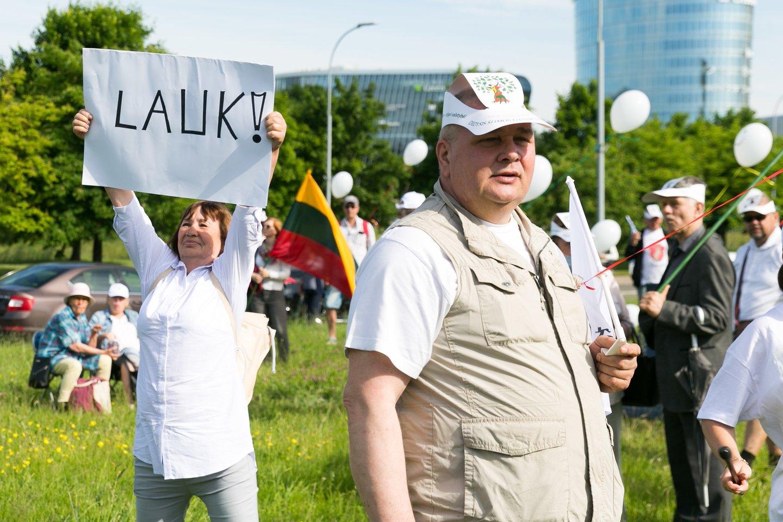 Akimirkos iš Šeimų maršo organizatorių renginių.<br>T.Bauro nuotr.
