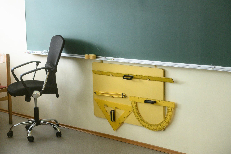 Nors šalies aukštosios mokyklospripažįsta, kad būsimųjų pedagogų skaičius vis dar nedžiugina, panašu, jogsusidomėjimas mokytojo specialybe po truputį auga.<br>V.Skaraičio nuotr.