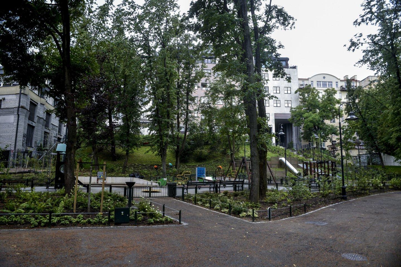 Reformatų sode atskiri sodo plotai apsodinti kiliminiais augalais ir svogūninėmis gėlėmis. Nuspręsta išsaugoti daugiau medžių, atsisakyta sodo aptvėrimo idėjos, pakoreguota takų sistema.<br>V.Ščiavinsko nuotr.