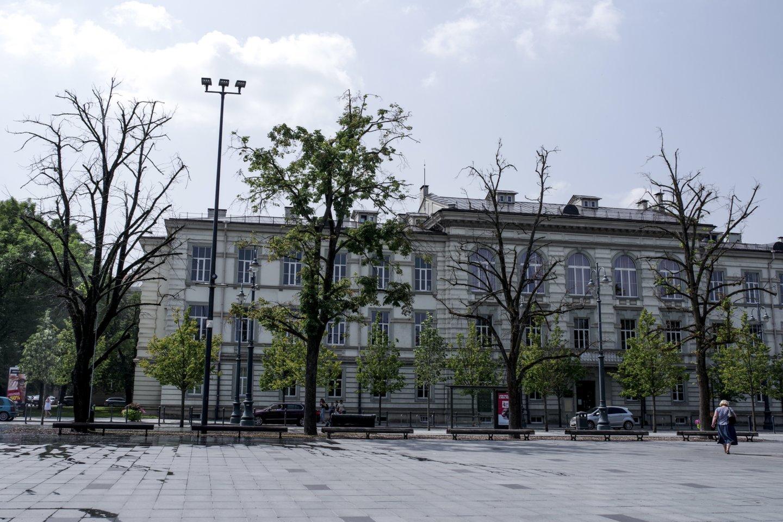 Liepos prie Lukiškių aikštės.<br>V.Ščiavinsko nuotr.