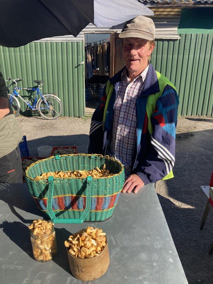 Grybautojas Vytautas per dieną prirenka 8-9 litrus voveraičių ir viską parduoda.ų ir viską parduoda.<br>www.silutesnaujienos.lt nuotr.