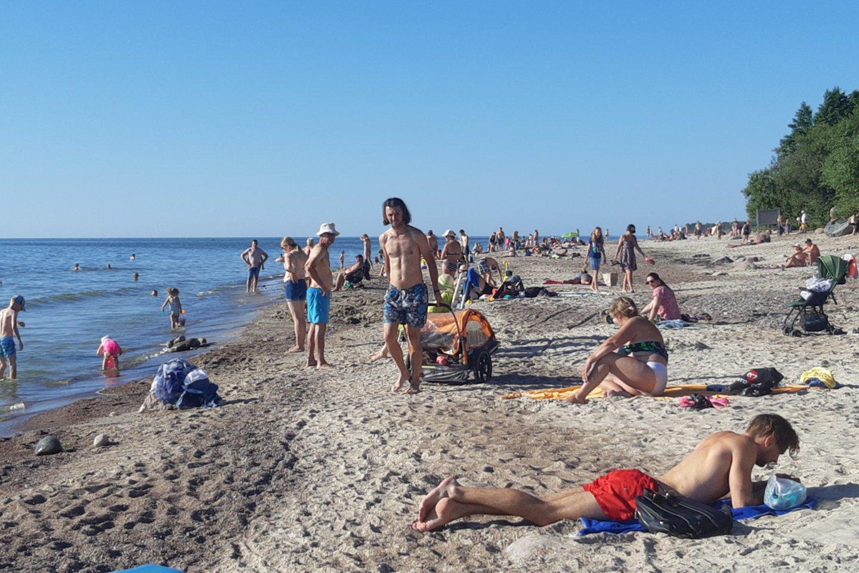 Seimo nario Kęstučio Masiulio siūlymu, Smiltynė galėtų atgauti prarastą kurortinės zonos statusą.<br>A. Pilaitienės nuotr.