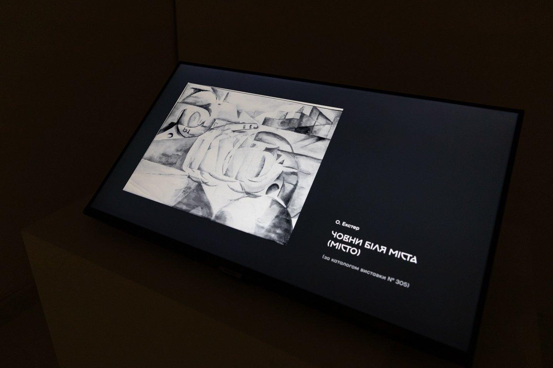 Parodos ekranuose galima pamatyti dailininko užrašus, eskizus, meno prigimties ir suvokimo tyrinėjimus.<br>G .Grigėnaitės, LNDM nuotr.