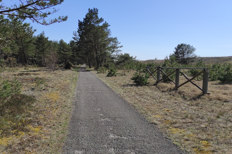 Lietuvos automobilių kelių direkcija ruošiasi atnaujinti pėsčiųjų ir dviračių taką nuo Smiltynės iki Preilos.<br>Kelių direkcijos nuotr.