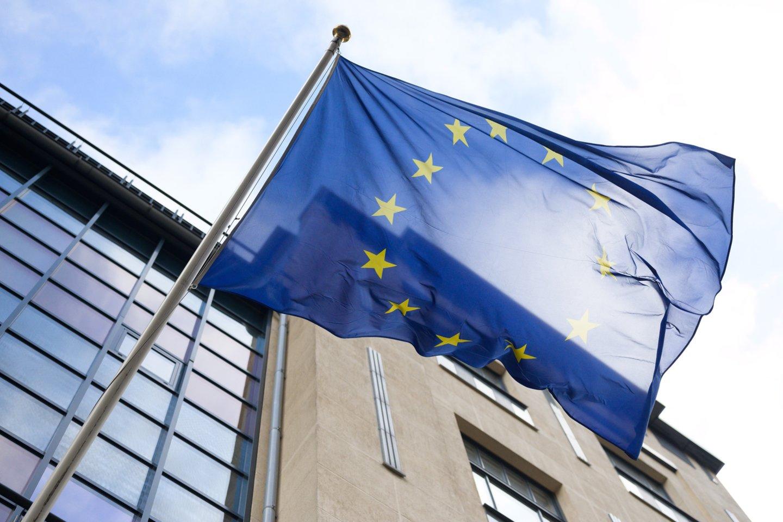 ES, Europos sąjunga.<br>V.Skaraičio nuotr.