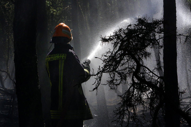 Miško gaisras.<br>V.Balkūno asociatyvi nuotr.